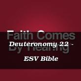 Deuteronomy 22 - ESV Bible
