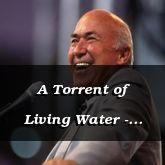 A Torrent of Living Water - John 7:39-8:19 - C2546C