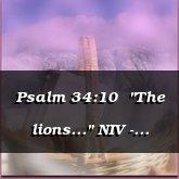 "Psalm 34:10  ""The lions..."" NIV - Hawthorne [Retro/Comedy]"