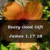 Every Good Gift James 1.17 18