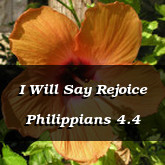 I Will Say Rejoice Philippians 4.4