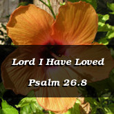 Lord I Have Loved Psalm 26.8