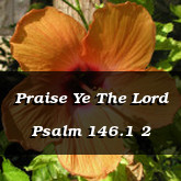 Praise Ye The Lord Psalm 146.1 2