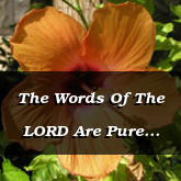 The Words Of The LORD Are Pure Psalm 12.6-7
