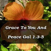 Grace To You And Peace Gal 1.3-5