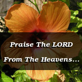 Praise The LORD From The Heavens Psalm 148.1-4