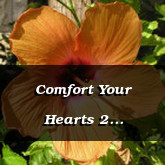 Comfort Your Hearts 2 Thessalonians 2.16 17
