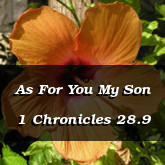 As For You My Son 1 Chronicles 28.9