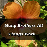 Many Brothers All Things Work Together For Good Romans 8.28 29 1 Corinthians 15.20