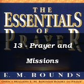 13 - Prayer and Missions