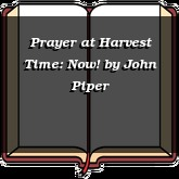 Prayer at Harvest Time: Now!