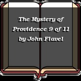 The Mystery of Providence 9 of 11