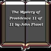 The Mystery of Providence 11 of 11