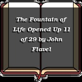 The Fountain of Life Opened Up 11 of 29