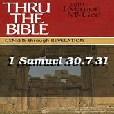 1 Samuel 30.7-31