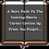 A Sure Path To The Coming Storm - Carter Conlon