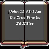 (John 15 #1) I Am the True Vine