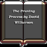 The Pruning Process