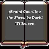 (Spain) Guarding the Sheep