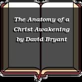 The Anatomy of a Christ Awakening