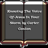 Knowing The Voice Of Jesus In Your Storm