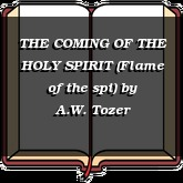 THE COMING OF THE HOLY SPIRIT (Flame of the spi)