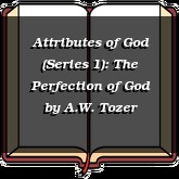 Attributes of God (Series 1): The Perfection of God