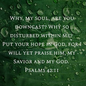 "Psalm 42:11 NIV ""Why, my soul, are you downcast? Why so disturbed within me? Put your hope in God, for I will yet praise him, my Savior and my God."""