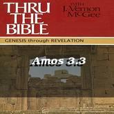 Amos 3.3
